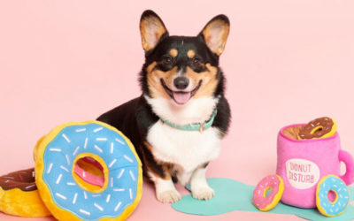 Drool-Worthy Design Feature: Zippy Paws