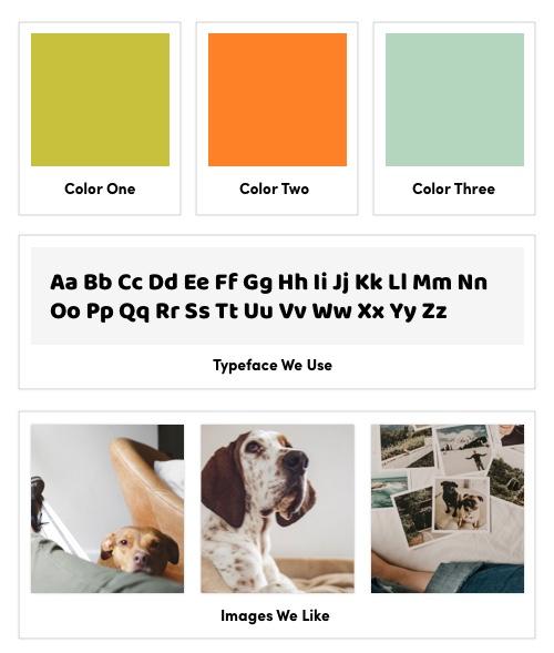 color palette instagram post