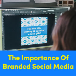 The Importance Of A Branded Social Media Feed