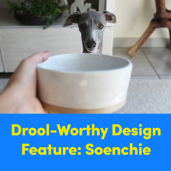 Drool-Worthy Design Feature: Soenchie