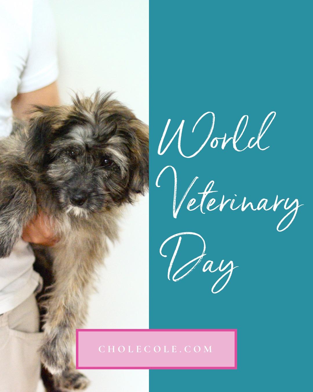 April 27th World Vet Day