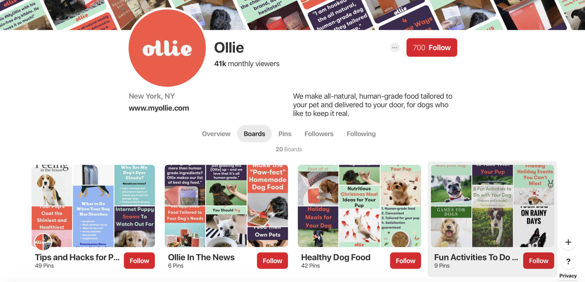 Ollie pinterest page