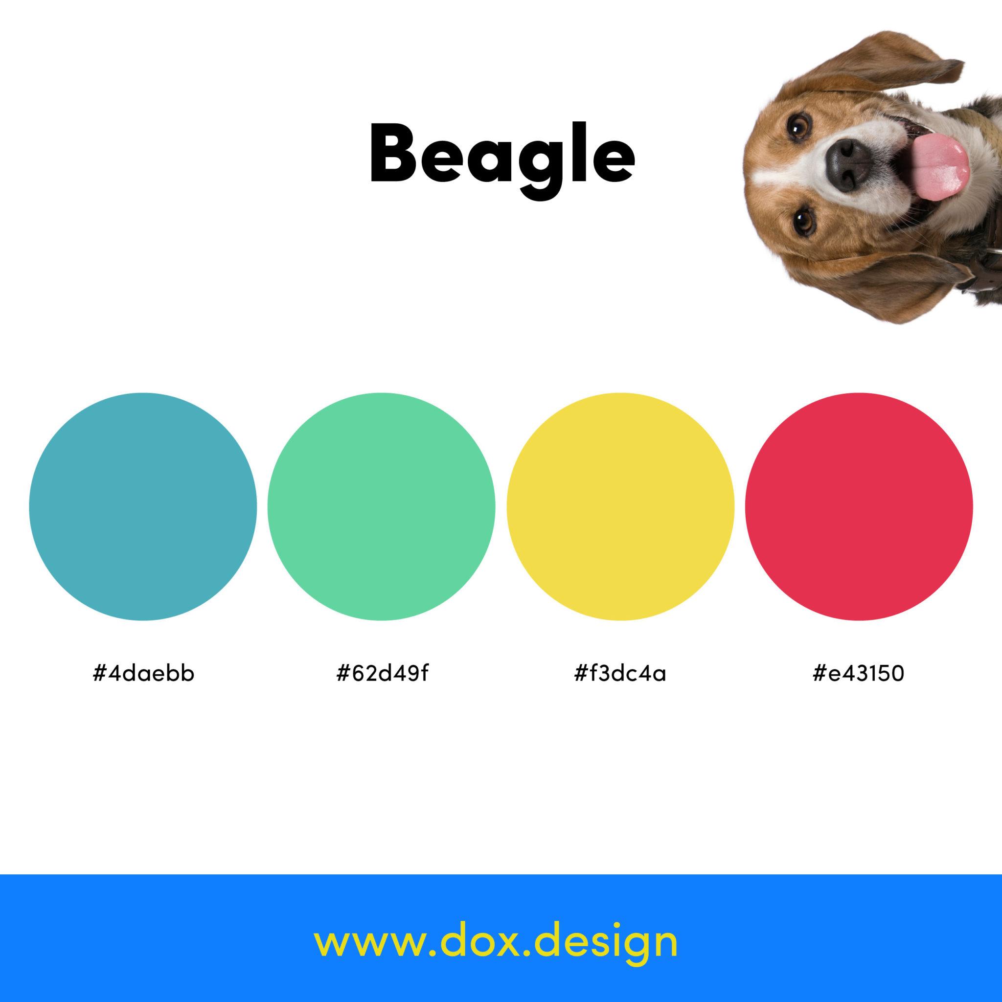 beagle color palette