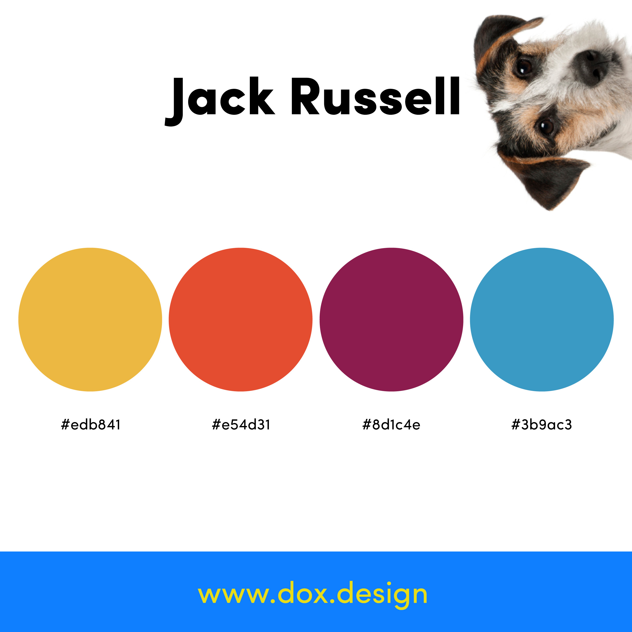 Jack Russell color palette