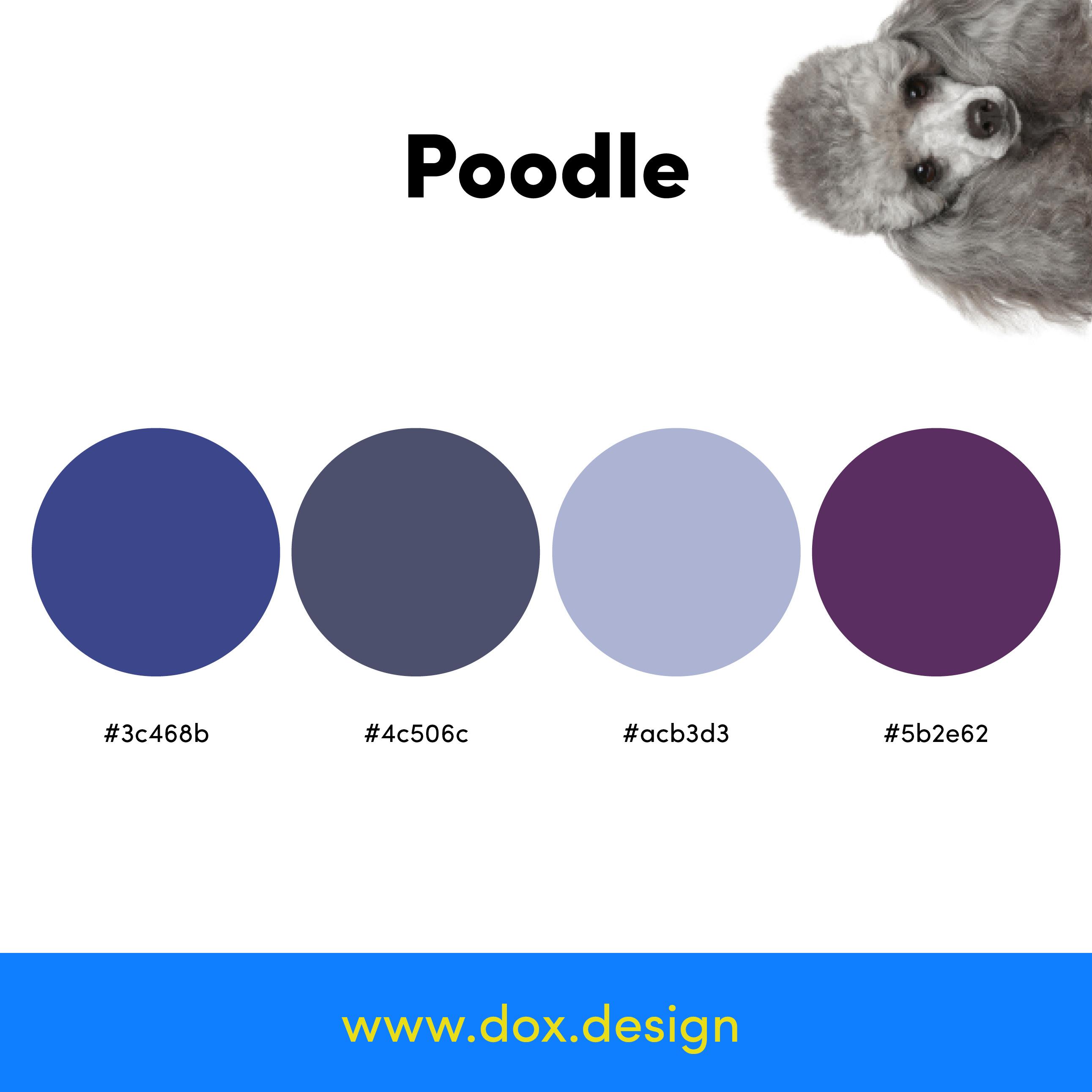 Poodle color palette
