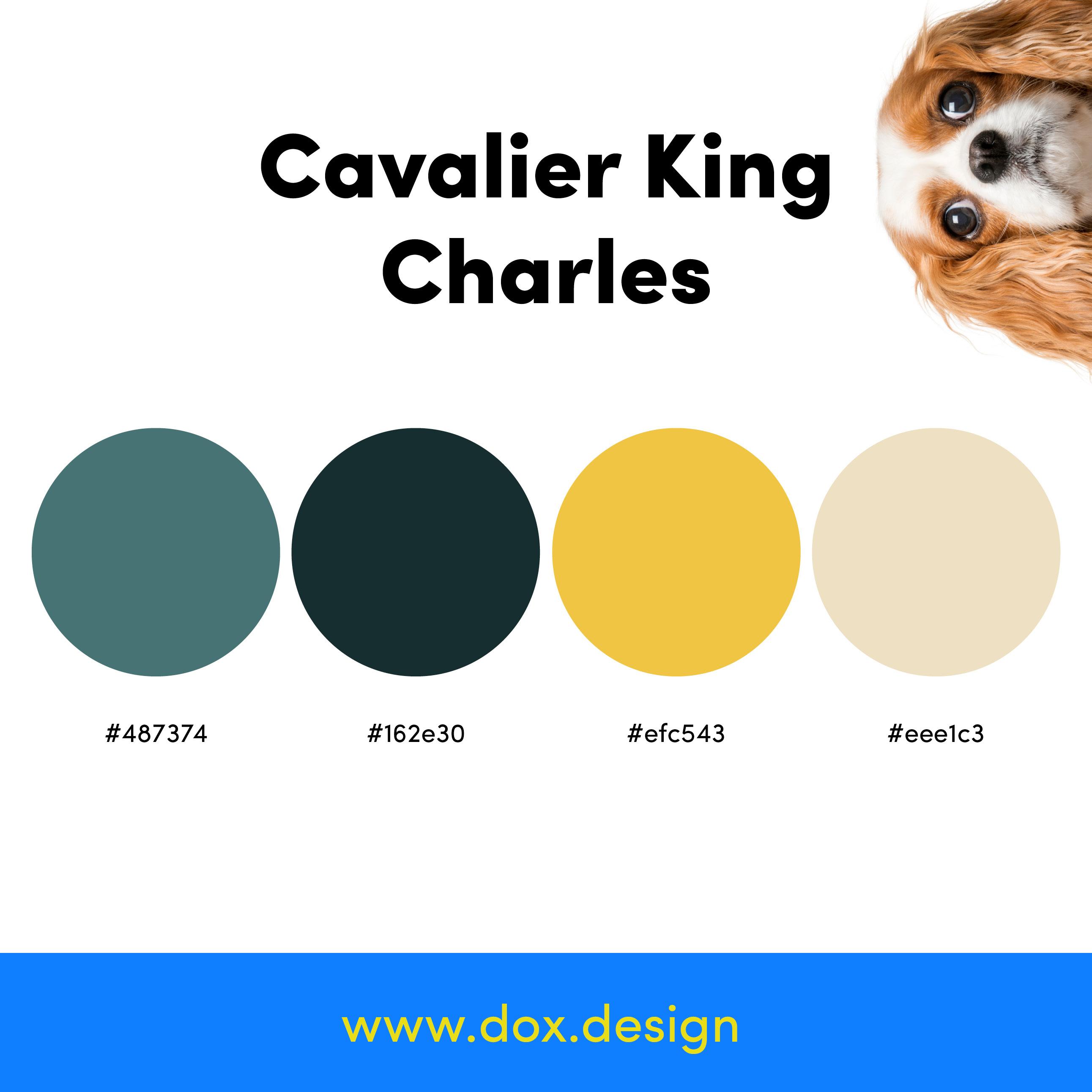 Cavilier King Charles color palette