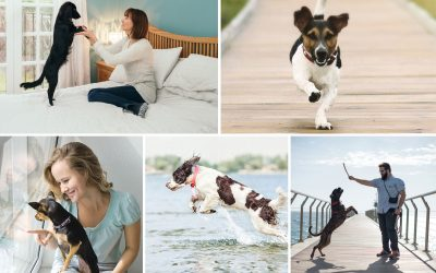 How To Successfully DIY Your Pet Brand Part 3: Photography & Copy