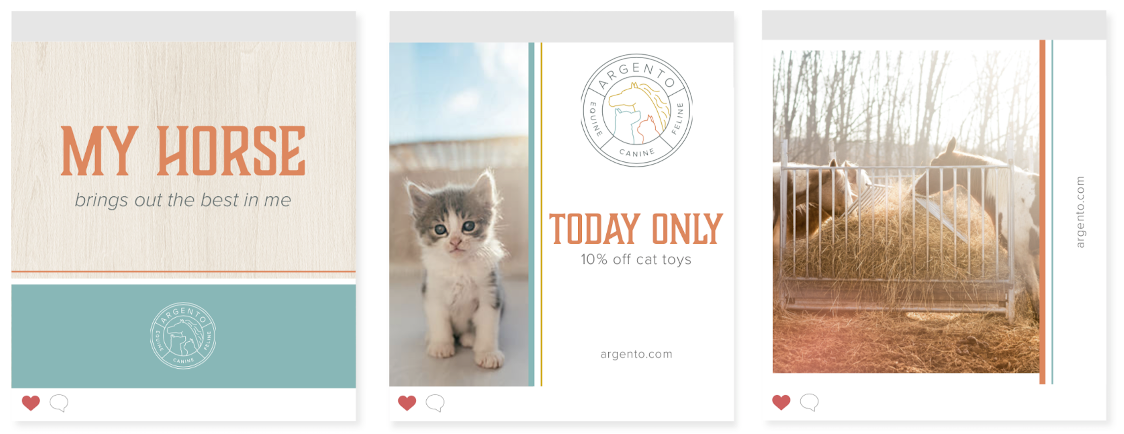 cat and dog instagram posts