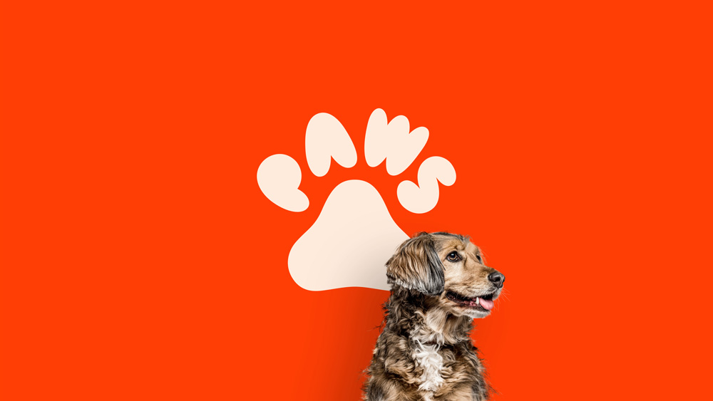 dog sitting in front of logo background