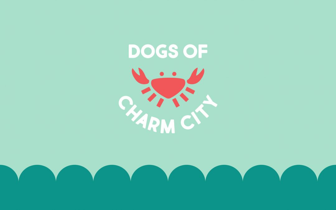 Dogs Of Charm City