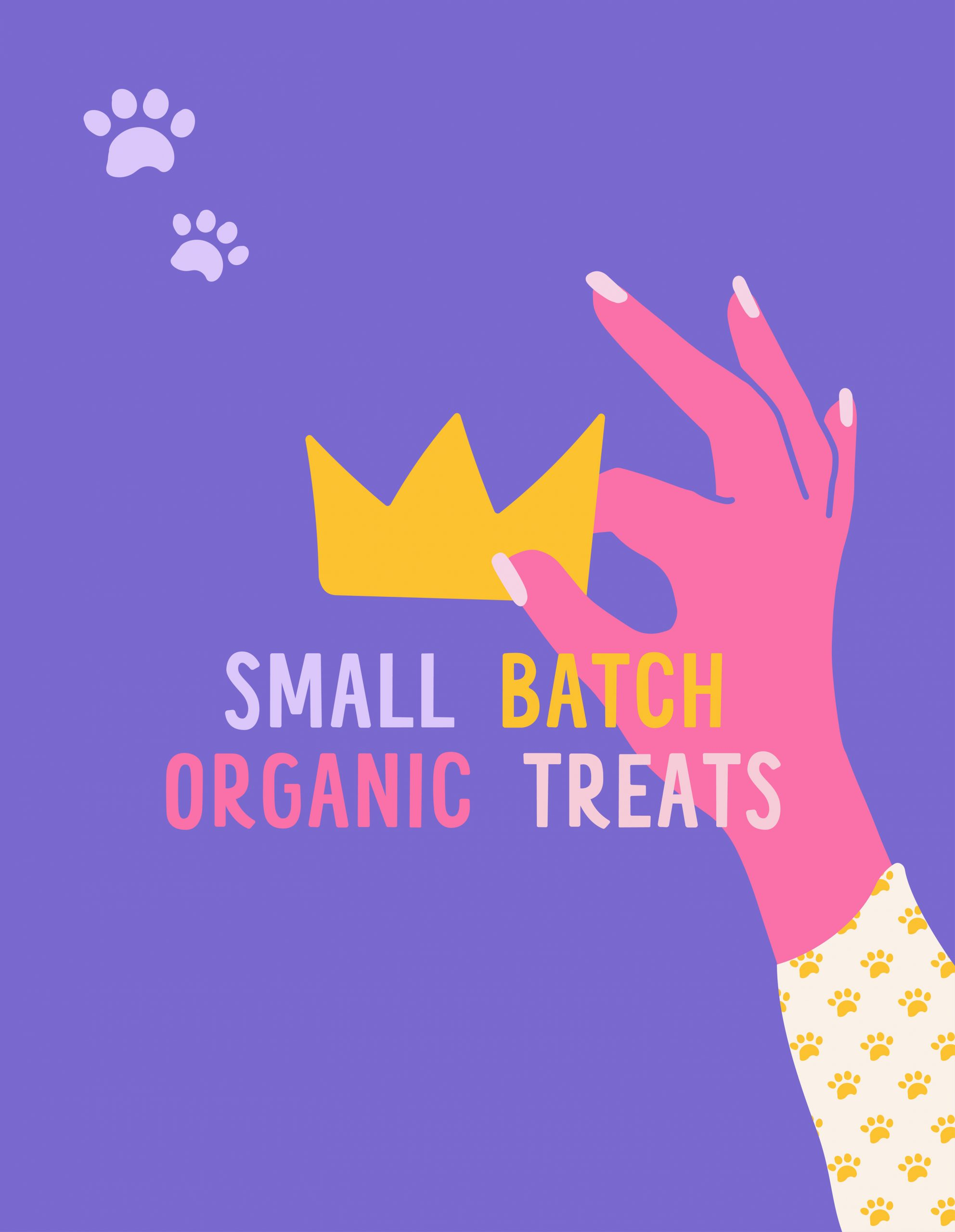 small batch organic treats flyer