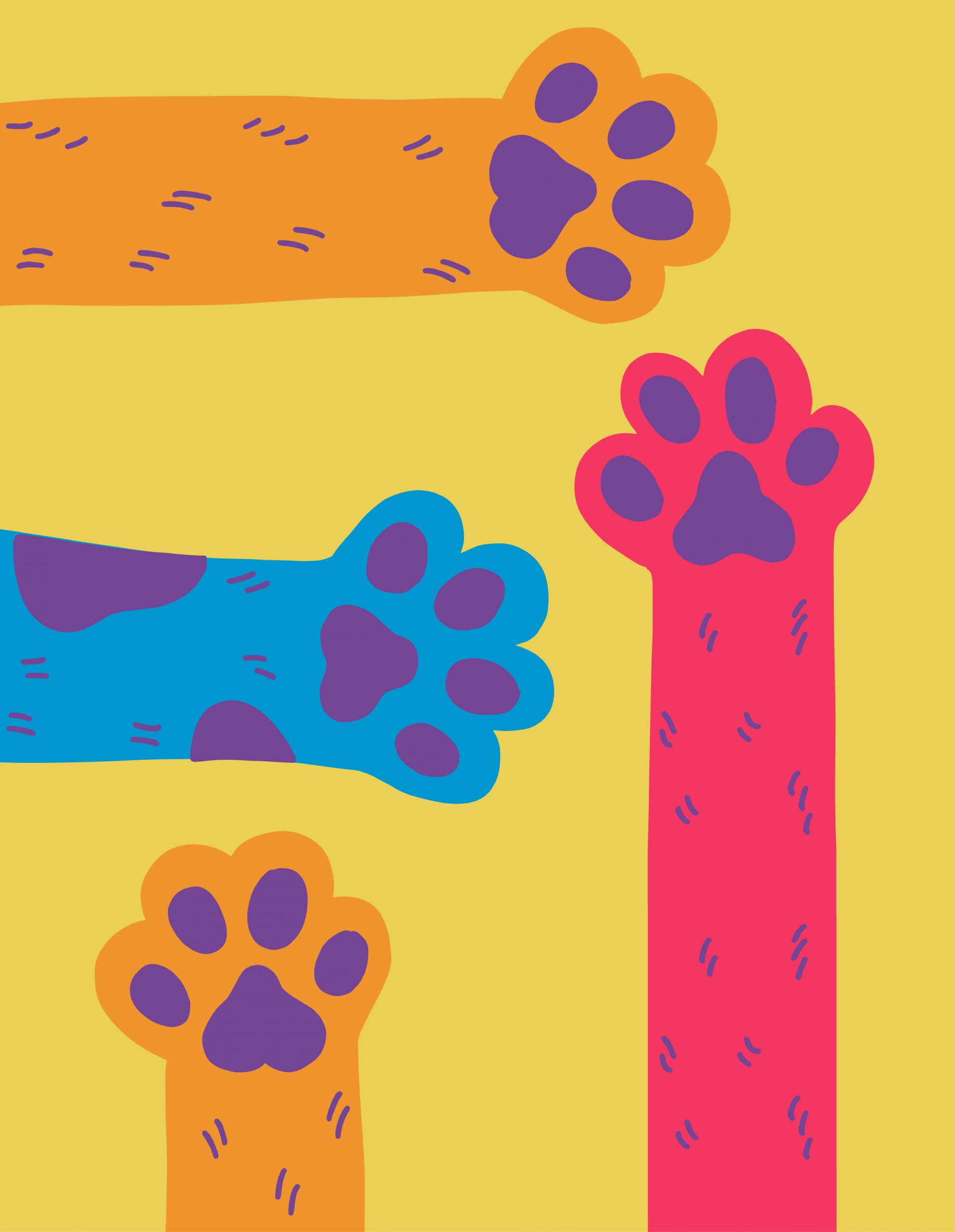 orange, blue, and red illustrated paws