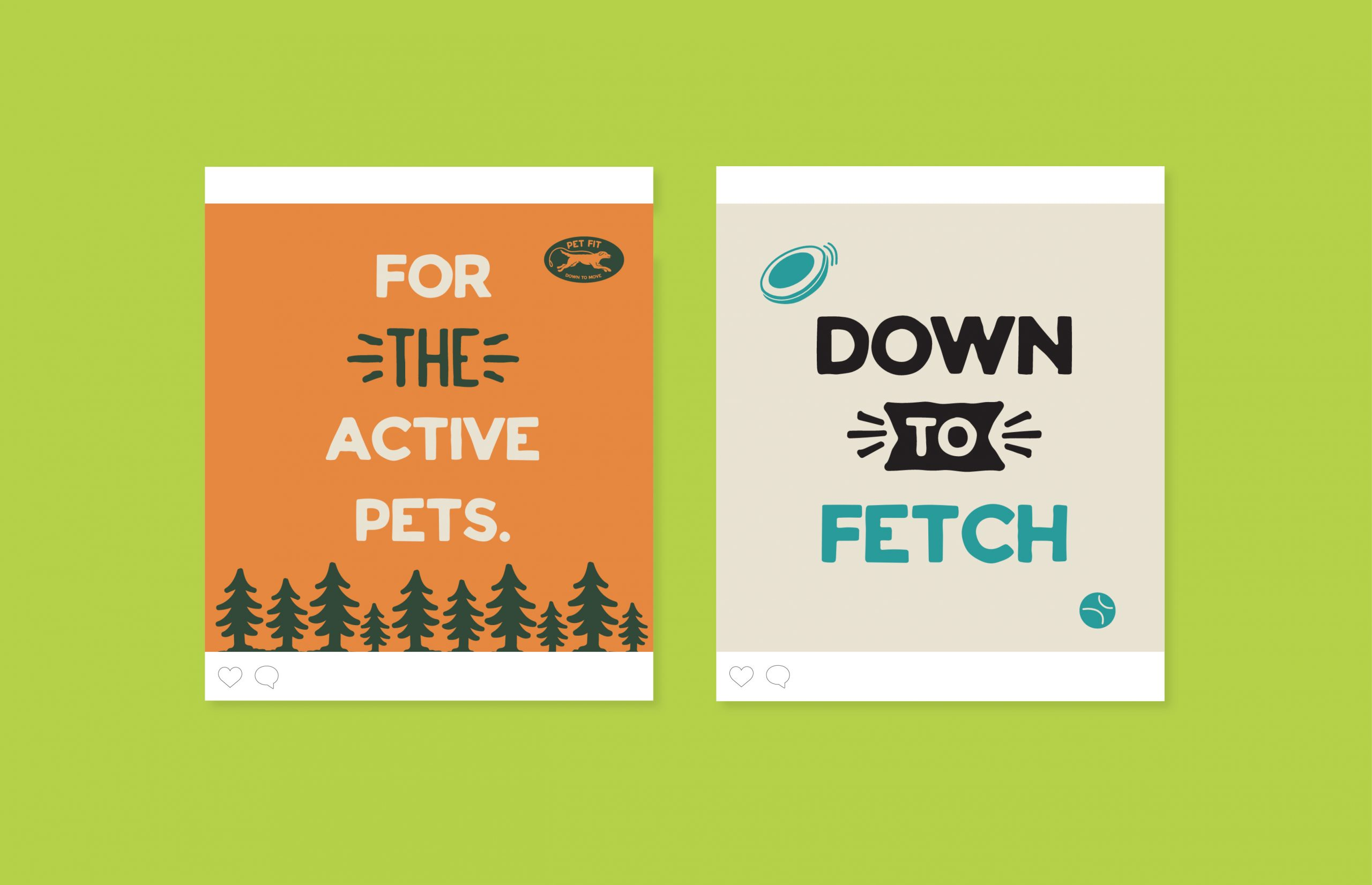 For The Active Pets instagram ad campaign