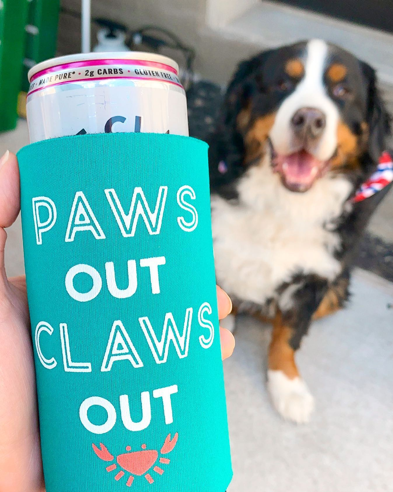 paws out claws out coozie