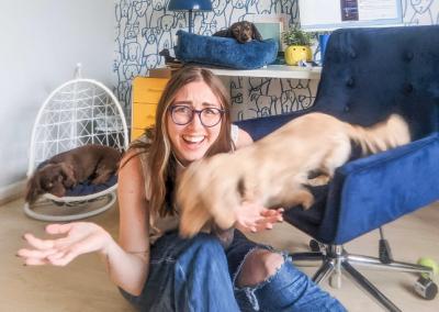 Creative Marketing Ideas to Celebrate National Pet Week