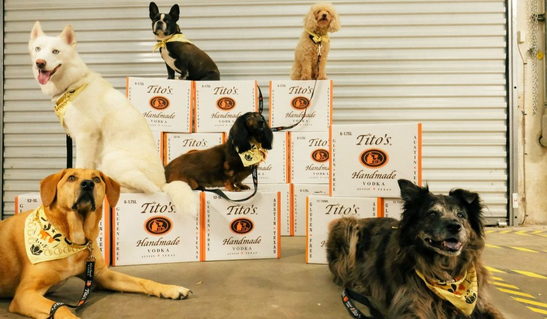 How To Use Dogs (or Other Pets) in Your Business Marketing